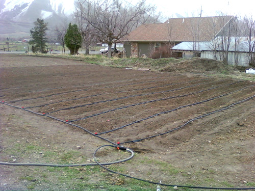 Beginner starter kit with drip tape irrigation for home and garden