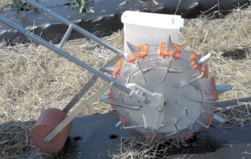 awesome little poly planter jr plants through plastic mulch easily, Garten ideen