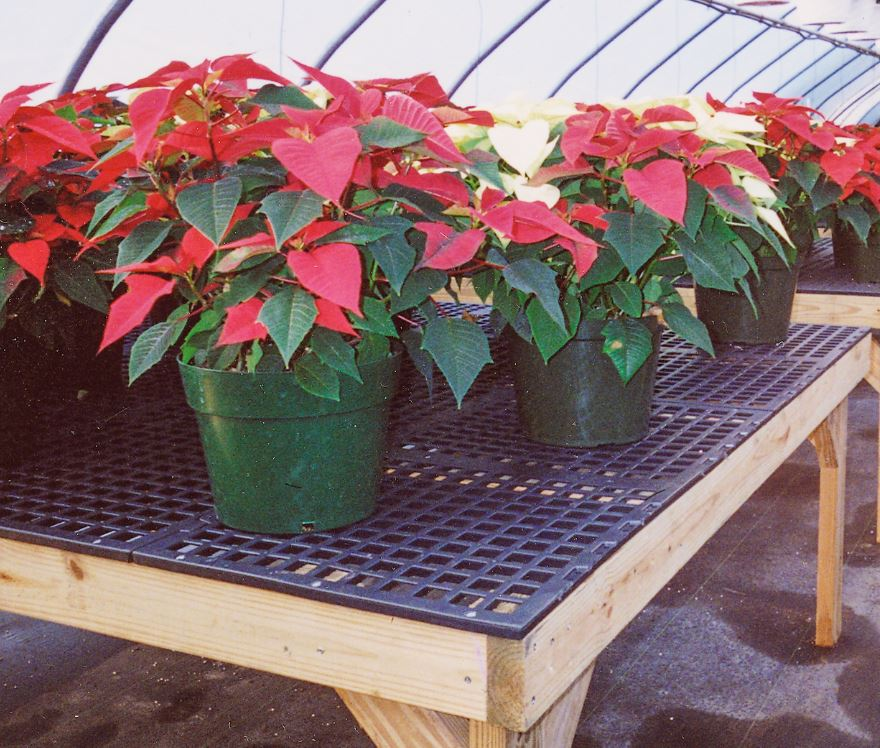 A V Bench Systems Are High Quality Plastic Uv Protected Greenhouse Bench Tops Designed For